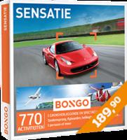 Bongo - Sensatie